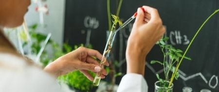 Ingénieur.e en biotechnologie