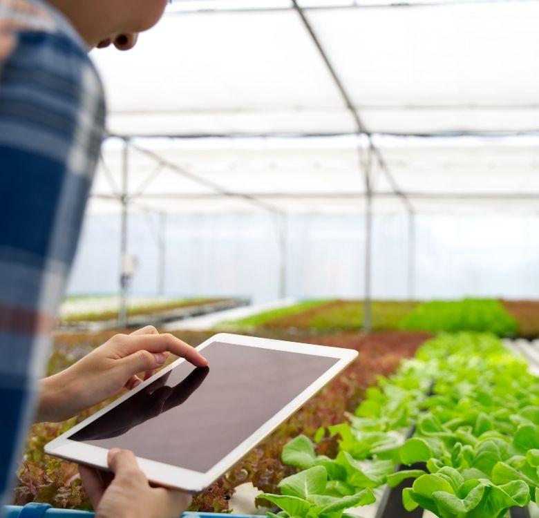 Assistant.e de production de semences