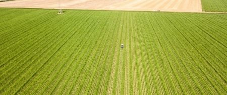 Agriculteur.rice-multiplicateur.rice